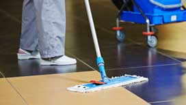 Precise hard floor cleaning